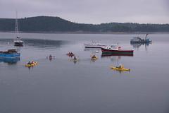 Kayakers at Pretty Marsh