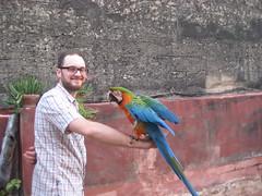 Pico and me
