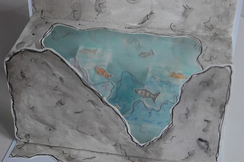 rockpool - pop up drawing fish detail