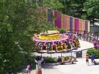 Cedar Point - Chaos