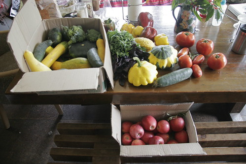 take away from volunteering at the student farm