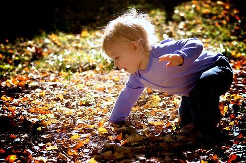 leaf lover.
