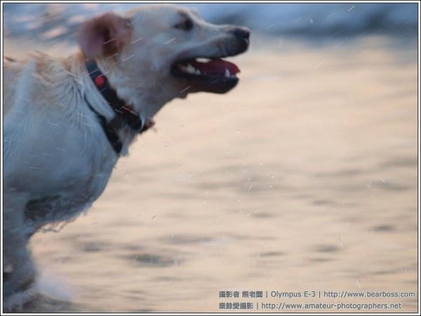 Xanthy 海灘游