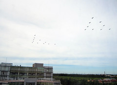 60th Anniversary Flypast