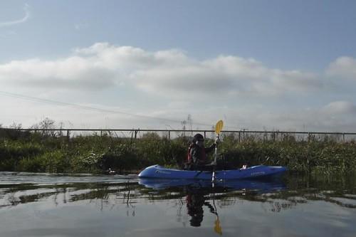 gosia paddles