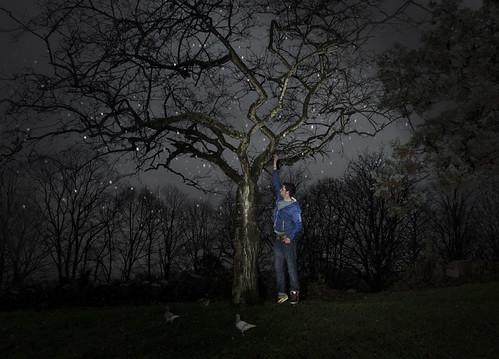 Pat & the tree