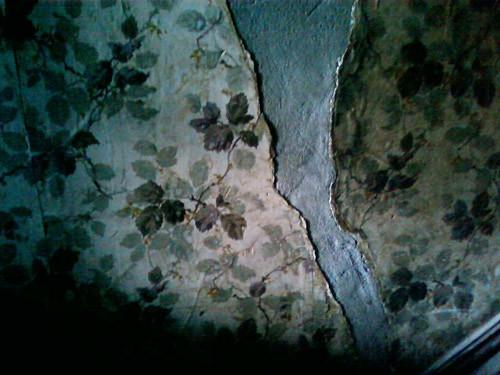 Wallpaper by Karyn Ellis