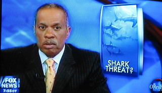 Juan Williams on Fox News