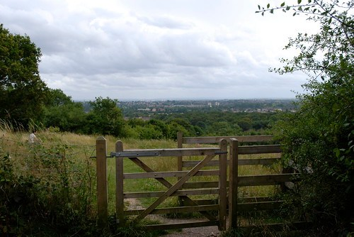 Halfway up Horsenden Hill