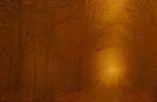 A Misty Mood