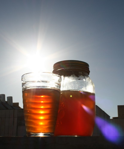 Iced Tea with Sunflare