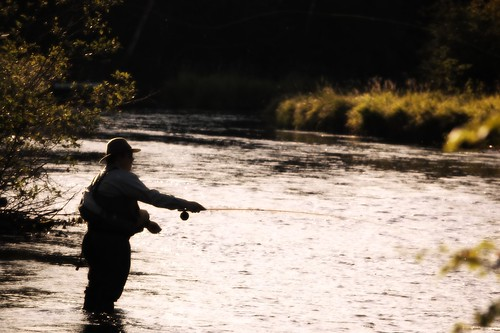 Silhouette Fly Fishing