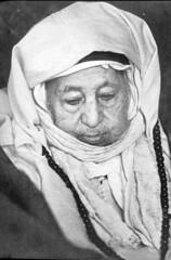 Shaykh Muhammad ibn al-Habib