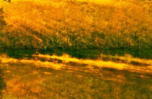 The Golden Light of Morn