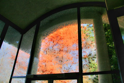 Etched Glass and Autumn