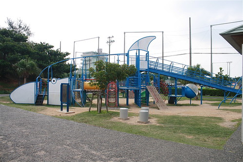 Dolphin Play Structure