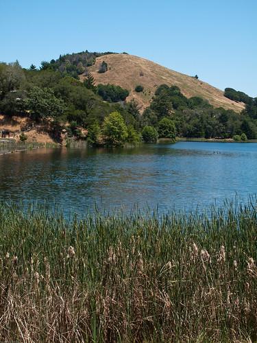 Lake Lagunitas by you.