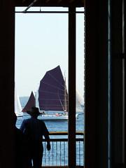 burgundy sails
