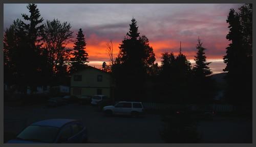 Sunrise on my street.
