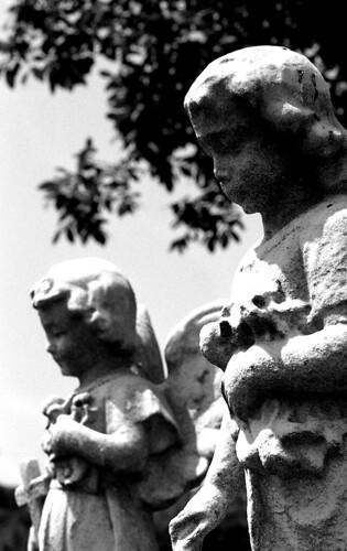 Little Angels. (Kodak Tri-X. Nikon F100. Epson V500.)