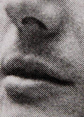 Alberto Arbasino, Romanzi e racconti, Mondadori -i Meridiani 2009; al cofanetto (entrambe le facciate): Ritratto di Alberto Arbasino, Roma 1969, ©Elisabetta Catalano (part.) 1