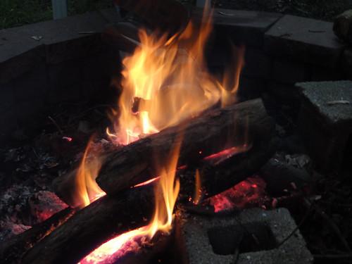 056/365 Fire