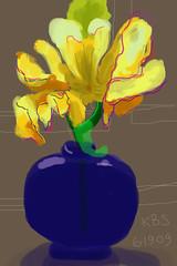 Yellow Iris - June 19, 2009