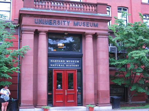 Harvard's Museum of Natural History