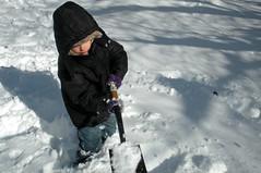 Snowfall 122009 (15)