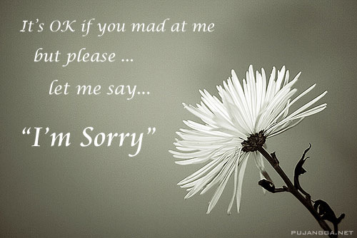 It's OK if you mad at me, but please ... let me say I'm sorry