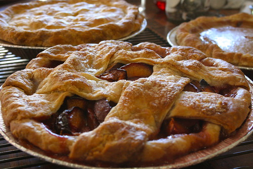 Photograph of pies