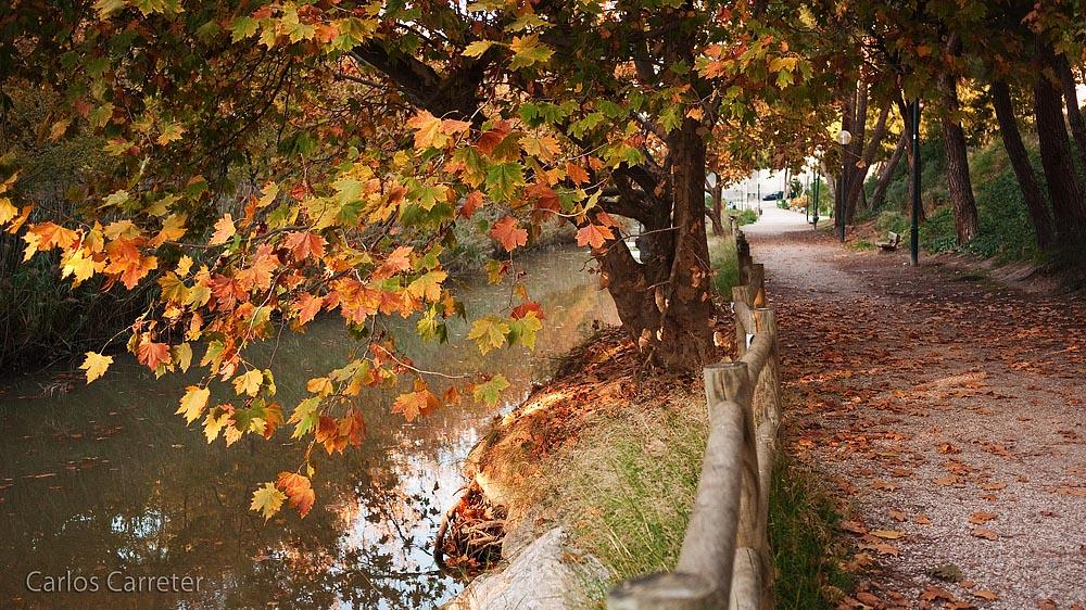 Paseo junto al Canal