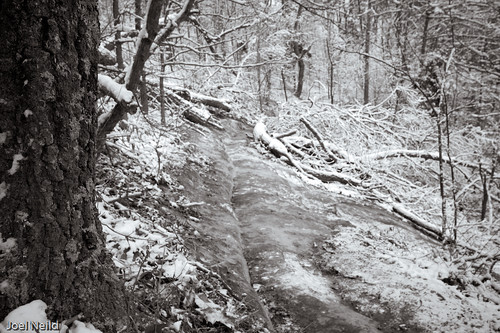 Ice covered trail
