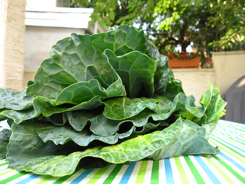 Fresh Collard Greens from the Italian Market