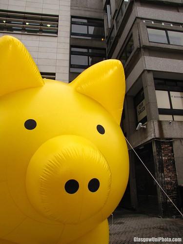 Giant Piggy Bank