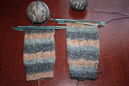 Fortissima socks-in-progress