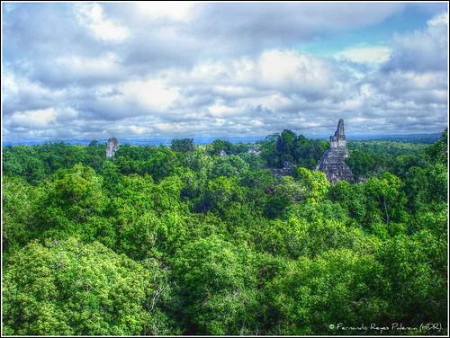 vista desde el Templo V