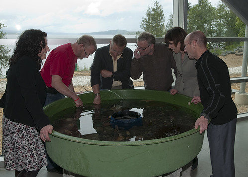 ICET members and touch tank