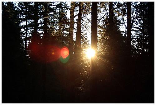 Tahoe 1