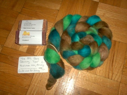 TheChicksWithSticks BFL Roving & Soap