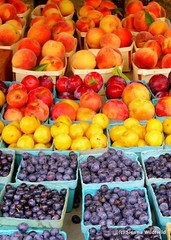 Farmers Market in Florence, MA. August 16th – 22nd is Massachusetts Farmers' Market Week.  Click here to read more. (Photo credit: Sienna Wildfield)