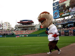 Teddy Roosevelt in the Washington Nationals presidents race