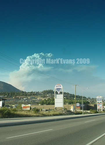 Terrace Mountain Forest Fire