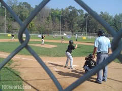 American Little League Baseball