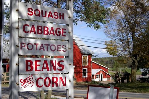 Story Farms, Palenville NY