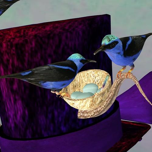 Bluebirds Calling