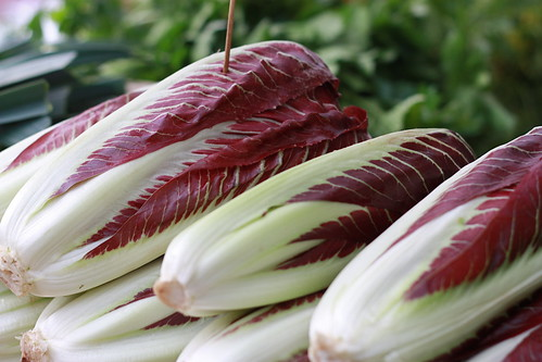 the most beautiful radicchio