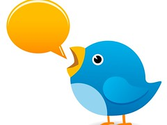 Twitter bird chatting