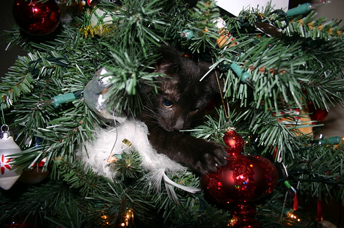 Christmas 2009 - Qubit Attacks Ornament