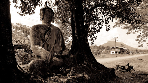 A Buddha between two trees in Champasak